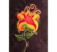 Flower Gleam and Glow Photographic Print