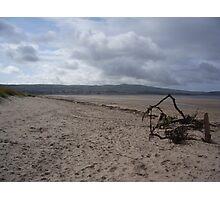 Driftwood - Ayrshire, Scotland Photographic Print