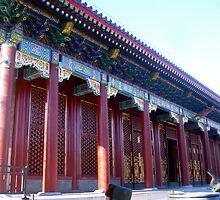 typical chinese palace by shmuli