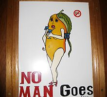No Mangoes ! by Penny Smith