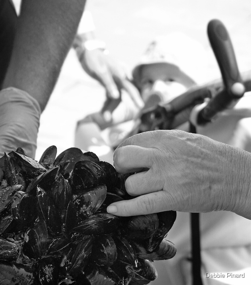 Buying Oysters - Gallipoli Italy by Debbie Pinard