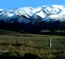 New Zealand by kimbawhitelion