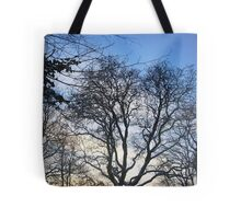 Winter skies Tote Bag