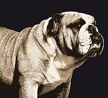 Bulldog Spirit by Michael Tompsett