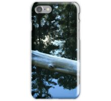 Still Water - The Rogue River iPhone Case/Skin
