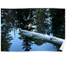 Still Water - The Rogue River Poster