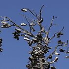 Shoe Tree by Tanya J