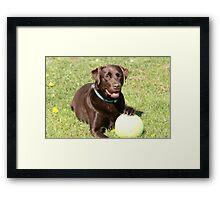 my ball Framed Print