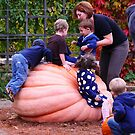 Pumpkin King by dandefensor