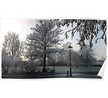 Frosted Morning Poster