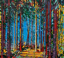 Pathway through forest by Gary McNulty