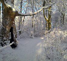 """Orchestral snowstorm"" by Merice Ewart Marshall - LFA"