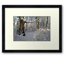 """Orchestral snowstorm"" Framed Print"