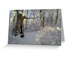 """Orchestral snowstorm"" Greeting Card"
