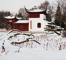 Chinese Garden in Montreal, Canada by Ralph Angelillo