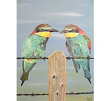 On The Wire, Bee-eaters Photographic Print