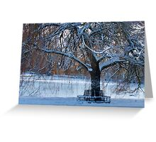 Snow Seat Greeting Card