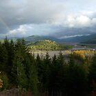 Toutle river Rainbow by Nichespur