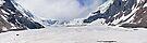 Athabasca Glacier - Panorama by Alex Preiss