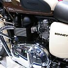 Born Again Bonneville by PhotogeniquE IPA