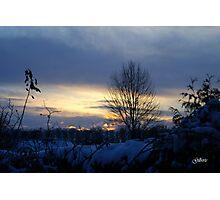 Snowdusk - Belgium Photographic Print