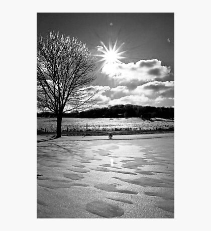 Indiana Winter Photographic Print
