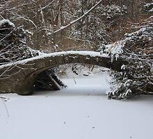 Lover's Bridge - U of T, Erindale Campus by mdpinto