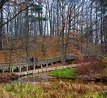 The Boardwalk - Rattray Marsh, ON by mdpinto