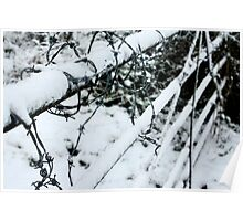 Snow covered barbed wire fence  Poster