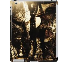 Time of the indians iPad Case/Skin