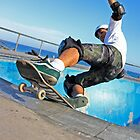 Skate - Rock to Fakie by Mick Duck
