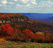Ozark Ridge along the Buffalo National River by Lisa G. Putman