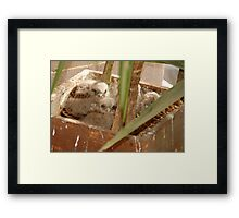 Patients is Virtue Framed Print