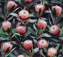 Evening Proteas - Pink on Charcoal by micklyn