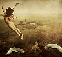 Free Fall by thinkingoutloud
