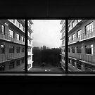 View by Stefan Kutsarov