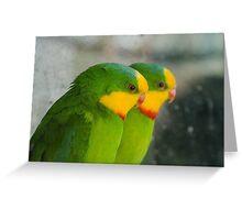 Superb Parrots Greeting Card
