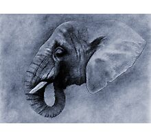 L' ELEPHANT I Photographic Print