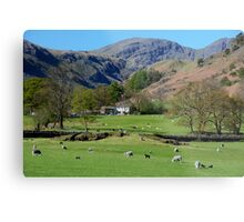 Deepdale Valley in The English Lake District Metal Print