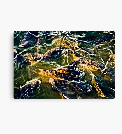 Counts us Canvas Print