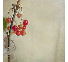 Berry Christmas Photographic Print