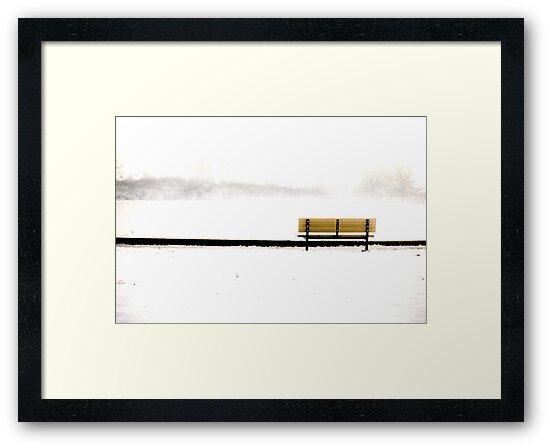 More of The Lough, Cork, Ireland by Brendan Ó Sé