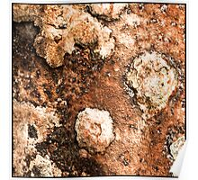 I feel a bit Rusty Poster