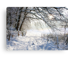 Winter path.... Canvas Print