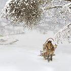 Country Winter by Igor Zenin