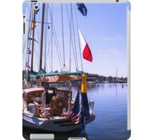 Shoreline Sanctuary iPad Case/Skin