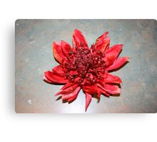 Striking Red Canvas Print