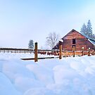Barnyard in Winter by Tracy Riddell