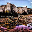 Botany Bay by John Gaffen