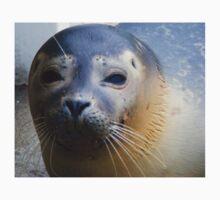 Seal  Baby Tee